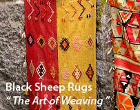 Turkish Rugs and Kilims The Art of Weaving